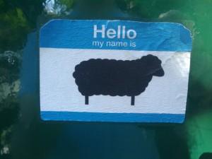 Hello, my name is sheep!