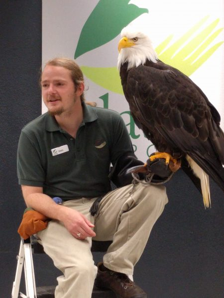 I had to carry Tommy out of the auditorium because he was getting excited and we had been cautioned not to freak out this magnificent bald eagle, which Mommy photographed.
